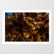 Worm-worn wood Art Print