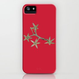 Ripe Grape tomatoes Red Background iPhone Case
