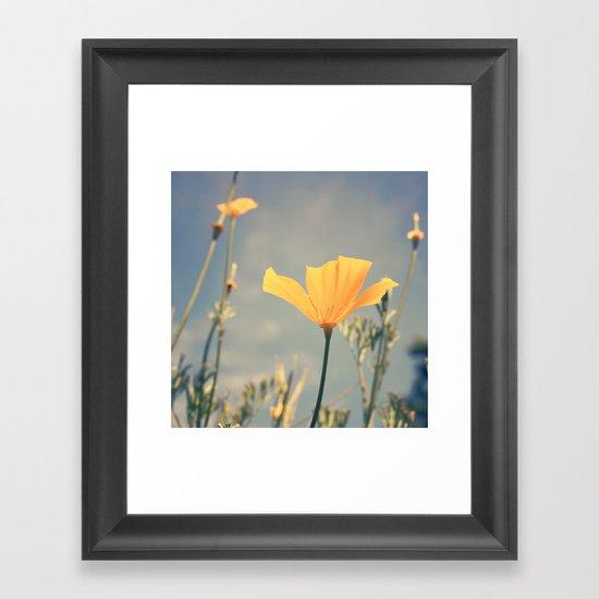 orange poppies! Framed Art Print