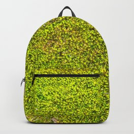Moss, Nature Trails for Life Backpack
