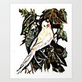 Bird watching Art Print
