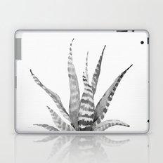 Southwest Minimalist Echeveria Laptop & iPad Skin