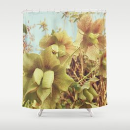 Spring Hellebore Shower Curtain