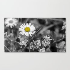 Black and White and Yellow Canvas Print