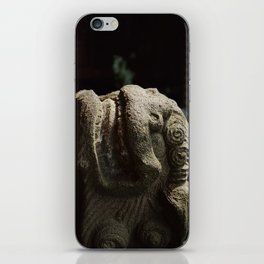 Lion Trapped in Concrete iPhone Skin