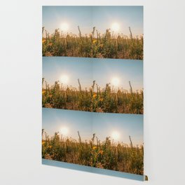 Uncultivated field in the Lomellina countryside at sunset full of yellow flowers Wallpaper