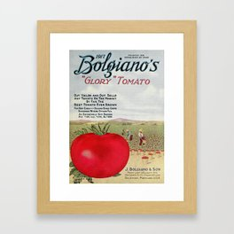 Bolgiano's Catalogue 1917 - Glory Tomato Framed Art Print