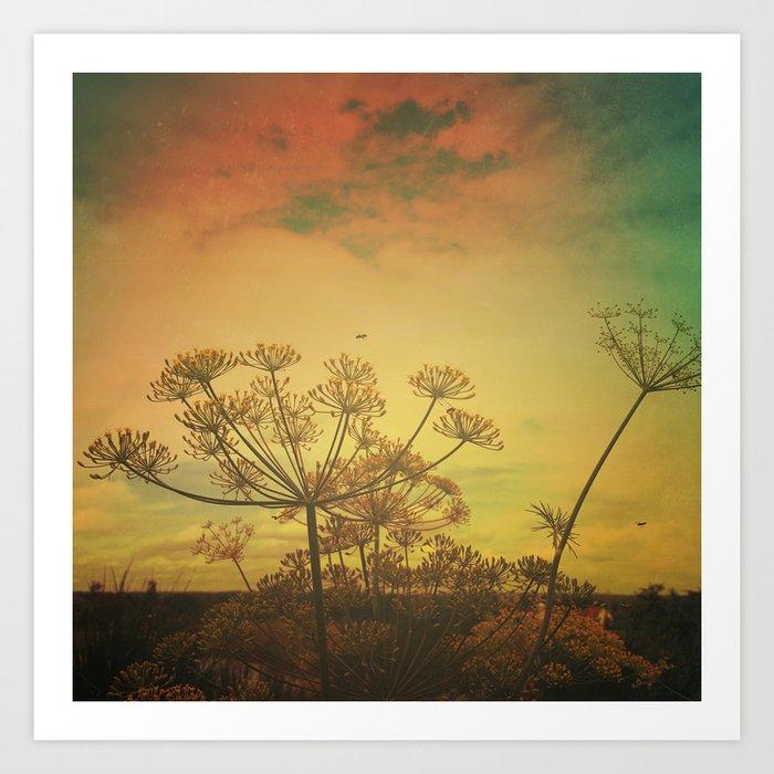 Summer Enchantment Art Print