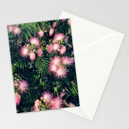 Mimosa Tree Floral Pattern | Photography | Tropical | Pink aesthetic Stationery Cards