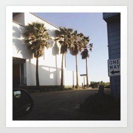 Palms for days Art Print