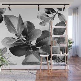 Ficus Leaves Dream #2 #bw #decor #art #society6 Wall Mural