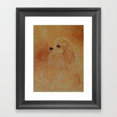 American Cocker Spaniel Framed Art Print