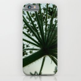 Hogweed iPhone Case