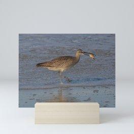 sand crab brunch Mini Art Print