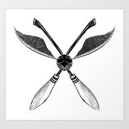 Quidditch Art Print