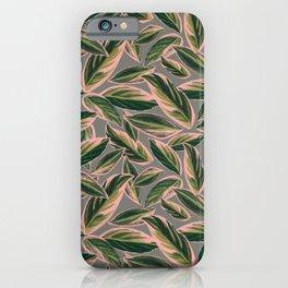 Calathea Leaves Pattern- Pink Green Gray iPhone Case