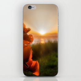 Poppies watching the sun set iPhone Skin