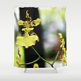 Hadas en el jardín Shower Curtain