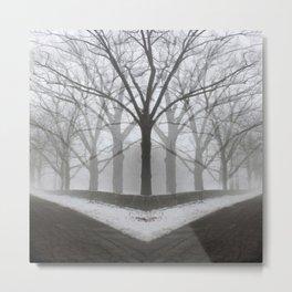 Shadows And Tall Trees Metal Print