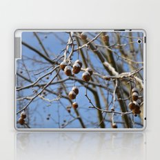 Winter II Laptop & iPad Skin