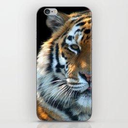 Sumatran Tiger - Panthera Tigris Sumatrae iPhone Skin