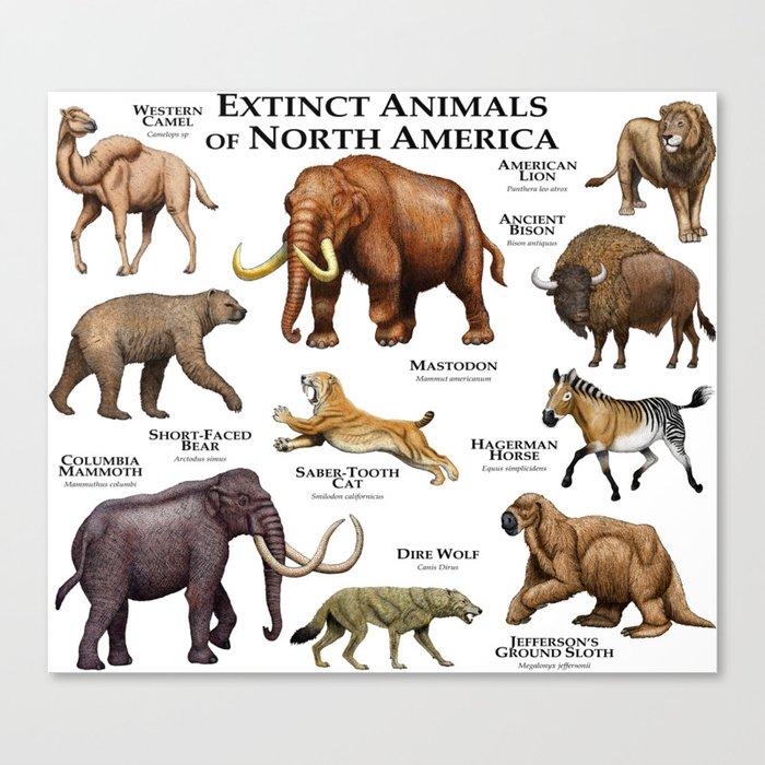 extinct animals america north canvas print wildlife prints society6 american species animal extinction names prehistoric