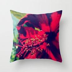 Saimaa Throw Pillow