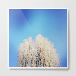 Naked Tree Metal Print