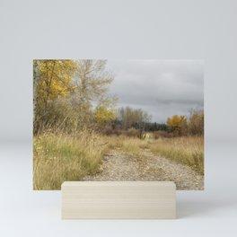 A Walk in Willow Flats - Grand Tetons Mini Art Print