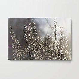 Gooseberry Metal Print