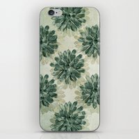 succulents iPhone & iPod Skins featuring Succulents by Sandra Arduini