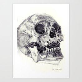 Skull pencil drawing Art Print