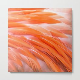 You Are What You Eat Flamingo Feathers Metal Print