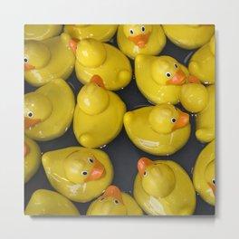Quackers Metal Print