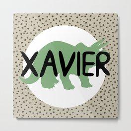 Xavier Metal Print