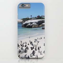 Boulders Beach, South Africa iPhone Case