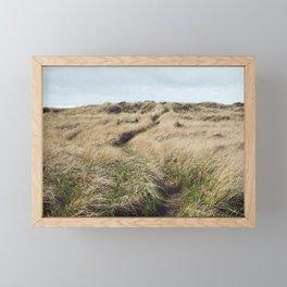 Oregon Dune Grass Adventure - Nature Photography Framed Mini Art Print