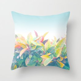After the rain / Tropical Croton Leaves 4 Throw Pillow