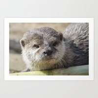otter Art Prints featuring Otter by PICSL8