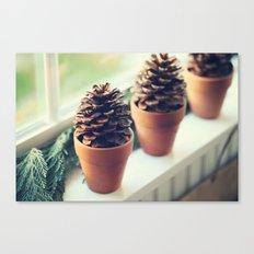 pinecones in the window Canvas Print