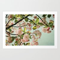blush Art Prints featuring Blush by Bella Blue Photography