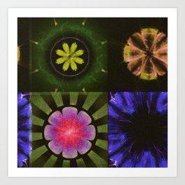 Brinish Symmetry Flowers  ID:16165-053020-45980 Art Print
