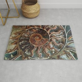 Fossilized Shell Rug
