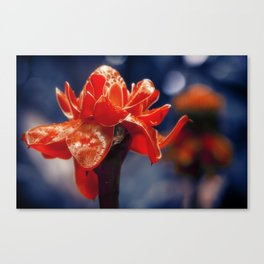 Caribbean Garden Flower Canvas Print