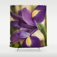 iris Shower Curtains featuring Iris by Light Wanderer