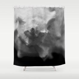 Murex Seashell Close-up Shower Curtain