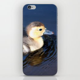Cute Duckling Swimming in a Pond iPhone Skin