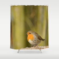 robin hood Shower Curtains featuring Robin by Susann Mielke