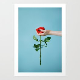 rose/oil Art Print