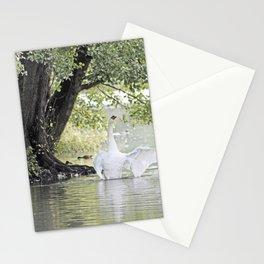 Swan Lake, Wollaton Hall, Nottinghamshire Stationery Cards